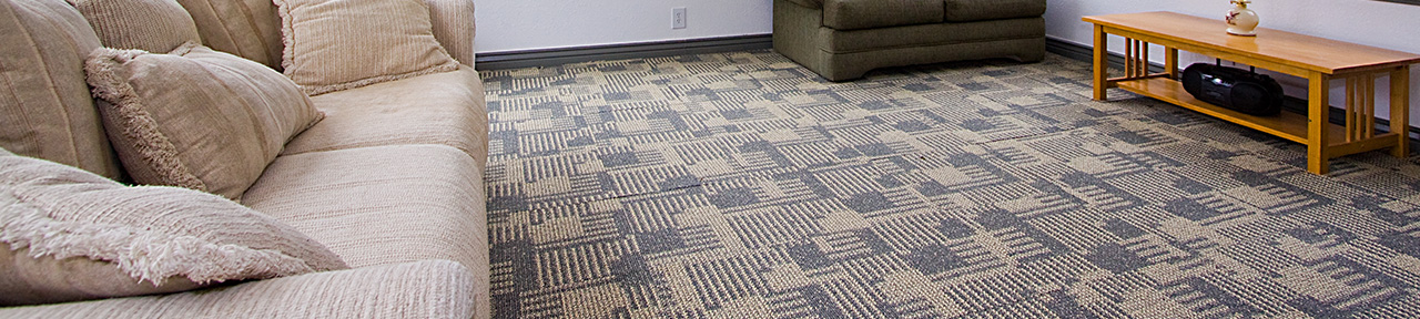 Top Area Rug Carpet And Upholstery